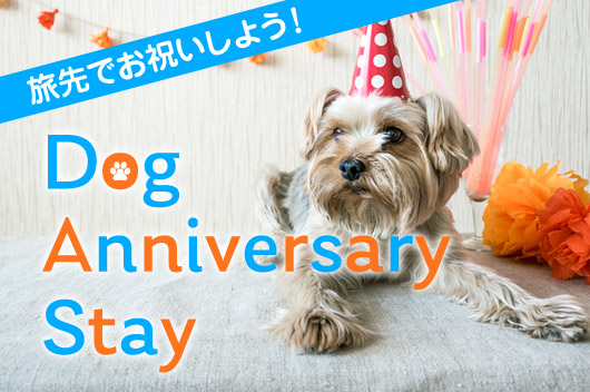 Dog Anniversary Stay